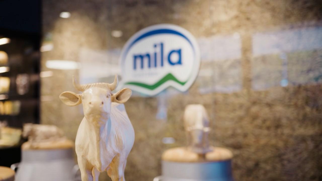 Galerie-Mila-15